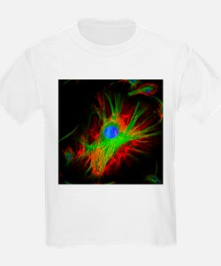 Cell structure - T-Shirt