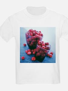 Cranberries - T-Shirt