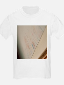 Height measurement - T-Shirt