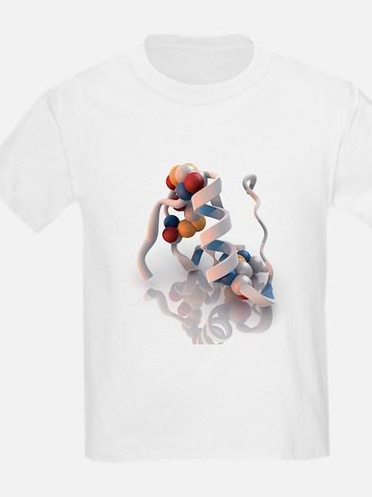 Insulin molecule - T-Shirt