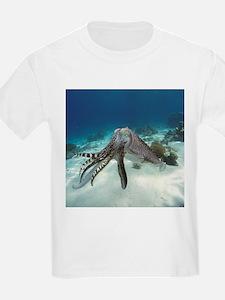 Broadclub cuttlefish - T-Shirt