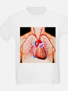 Human heart, artwork - T-Shirt