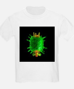 Bacteriophage phi29, computer model - T-Shirt
