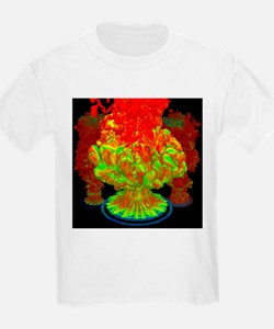 Fire plumes, computer simulation - T-Shirt