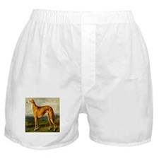 Greyhound 1880 Digitally Rema Boxer Shorts