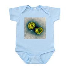 Influenzavirus B, TEM - Infant Bodysuit