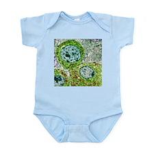Pituitary gland, TEM - Infant Bodysuit