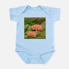 Water bears, SEM - Infant Bodysuit