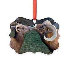 Desert Bighorn Sheep - Ornament