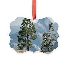 Jeffrey pine and whitebark pine trees - Ornament