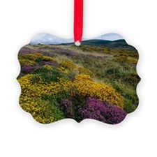 Mixed wildflowers on moorland - Ornament