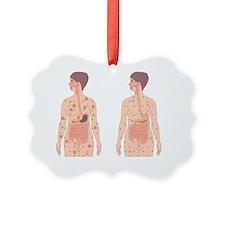 Normal blood glucose level, artwork - Ornament