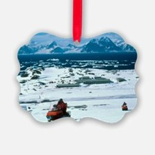 Antarctic Research Station - Ornament