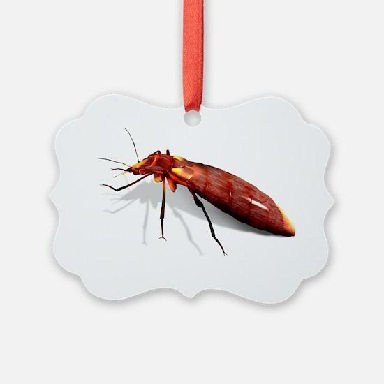 Bed bug, artwork - Ornament