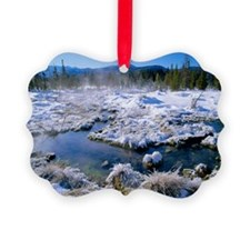 Hot spring - Ornament