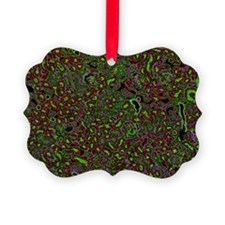 Kidney cells, light micrograph - Ornament