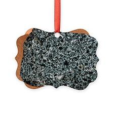 Nepheline monzosyenite igneous rock - Ornament