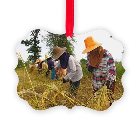 Rice harvest - Picture Ornament