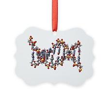 DNA molecule, artwork - Ornament