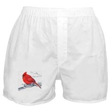 Cardinal Painting Boxer Shorts