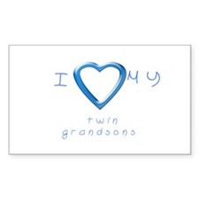 I love my twin grandsons Decal