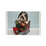 Dudley in Winter Sleigh Rectangle Magnet
