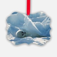 Harp seal pup - Ornament