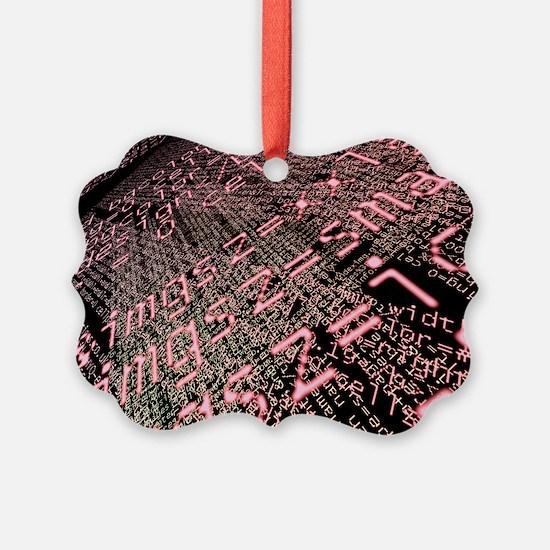 Internet computer code - Ornament