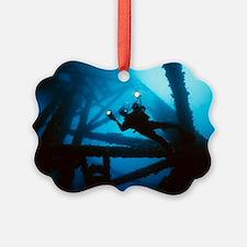 Scuba diver - Ornament