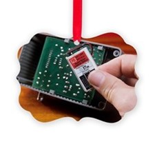 Rechargeable battery - Ornament