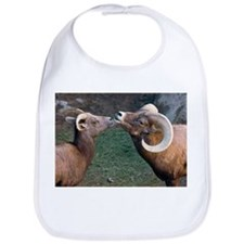 Desert Bighorn Sheep - Bib