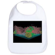 Fuel cell nanocatalysts - Bib