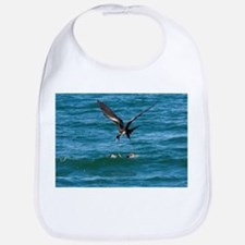 Great frigatebird and blue-footed booby - Bib