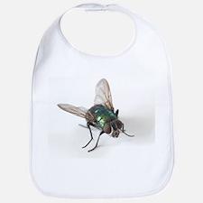 Greenbottle fly - Bib