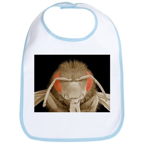 Honey bee head, SEM - Bib