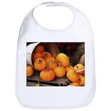 Harvested pumpkins - Bib