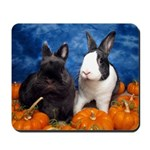 Tiny Tim and Dixie in Pumpkin Patch Mousepad