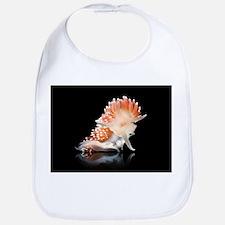 Nudibranch - Bib