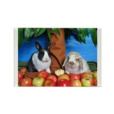 Dinah and Macintosh Picking Apples Rectangle Magne
