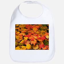 Maple (Acer japonicum vitifolia) leaves - Bib