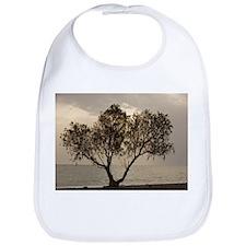 Tamarisk tree - Bib