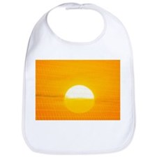 Sunset reflection on solar panel, artwork - Bib