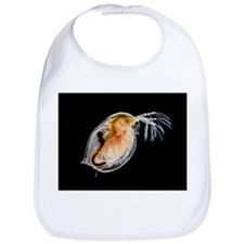 Water flea - Bib