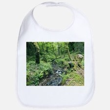 Stream and woodland in Devon - Bib