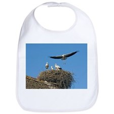 White storks nesting - Bib