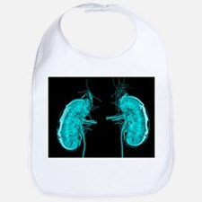 Artwork of the kidneys - Bib