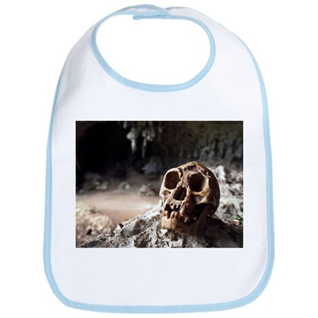 Homo floresiensis skull - Bib