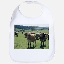 Jersey cows - Bib