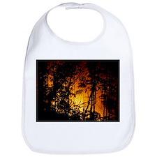 Forest fire burning in rainforest - Bib