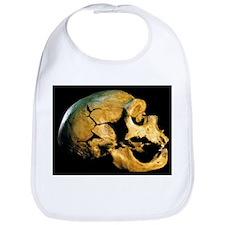 Neanderthal skull - Bib